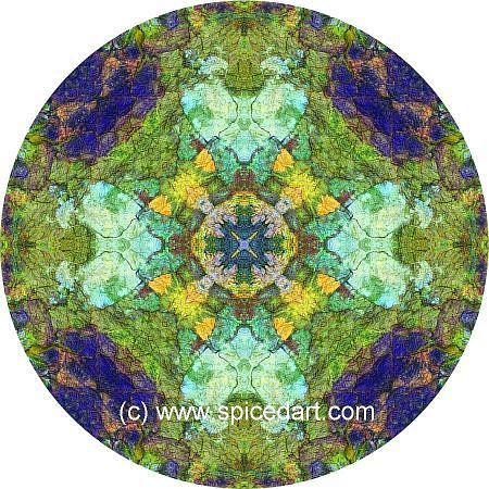 Mandala Art Print - Great Sandy Desert 11